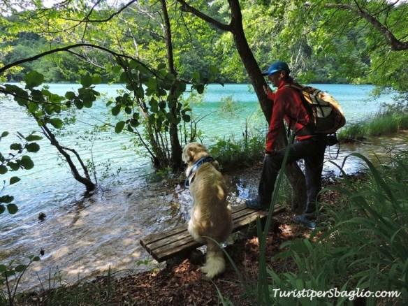Laghi di Plitivice, Parco Nazionale - Croazia - 104