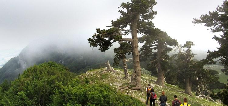 Parco Nazionale del Pollino: Festival dell'Escursionismo dal 28 al 31 Luglio 2016, San Severino Lucano