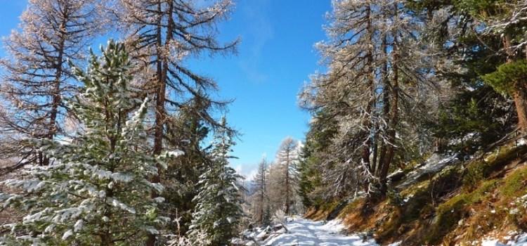 Chandolin, una Giornata da Elfi nella Svizzera Vallese