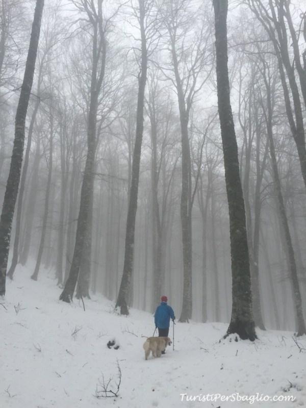 3-marzo-sellata-ultima-neve_new