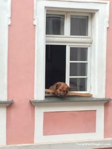 Scambiocasa a Praga: i vicini