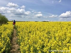 Viaggio nella Repubblica Ceca, Boemia del Sud