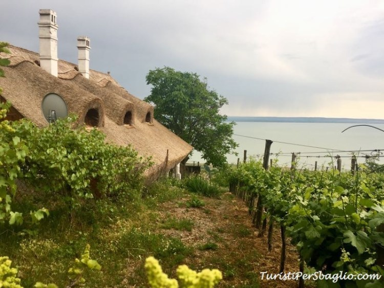 Il Balaton dal Monte Badacsony