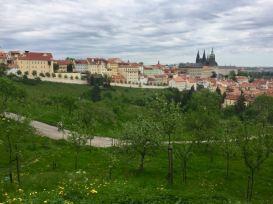 Praga Insolita Itinerario dal Monastero di Brevlov a Strahov
