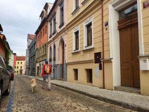Praga itinerario insolito - Turisti per Sbaglio