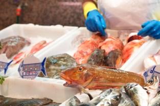 Puesto de pescado en la Plaza de Abastos de O Grove