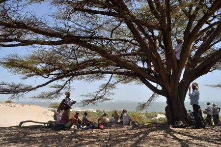 Students rest under a wide Acacia at Napaget V, on sand dunes overlooking Lake Turkana.