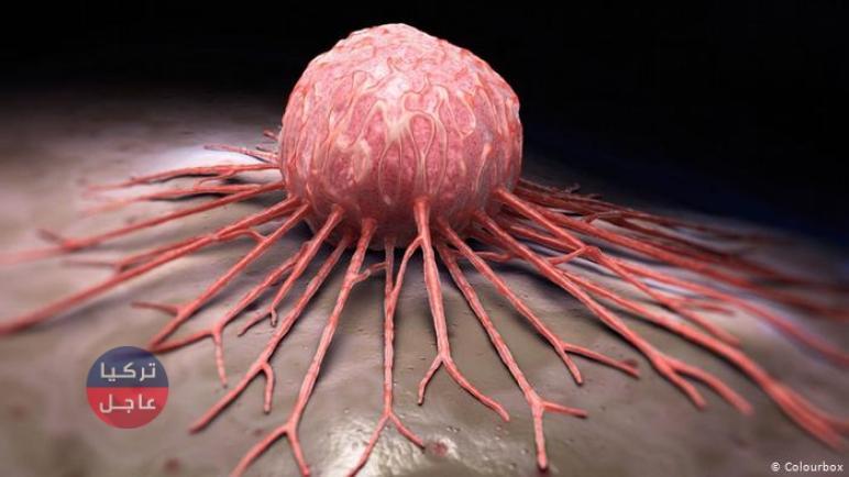 علاج لكل أنواع السرطان .. اكتشاف ثوري