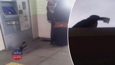 تركيا .. بالفيديو الغراب اللص يظهر في إسطنبول ويسرق مال امرأة من الـ ATM
