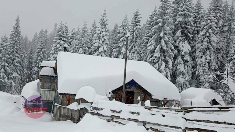 الثلوج تفاجئ ولاية تركية وتهطل بغزارة لتغطي المنازل (شاهد)