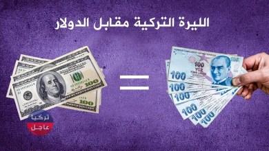 100 دولار كم تساوي ليرة تركية .. ارتفاع جديد تسجله الليرة التركية مقابل الدولار والعملات