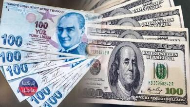 100 دولار كم ليرة تركية تساوي .. سعر الدولار اليوم في تركيا