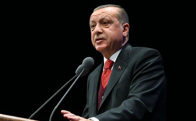 Saudi Arabia, Erdogan, criticism, moderate Islam