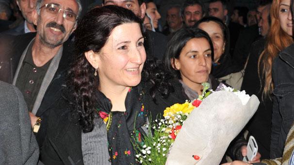 Guler Yildirim, Constitutional Court, rejection, lawmaker