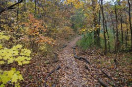 TCNP offers 4.5 miles of walking and hiking trails