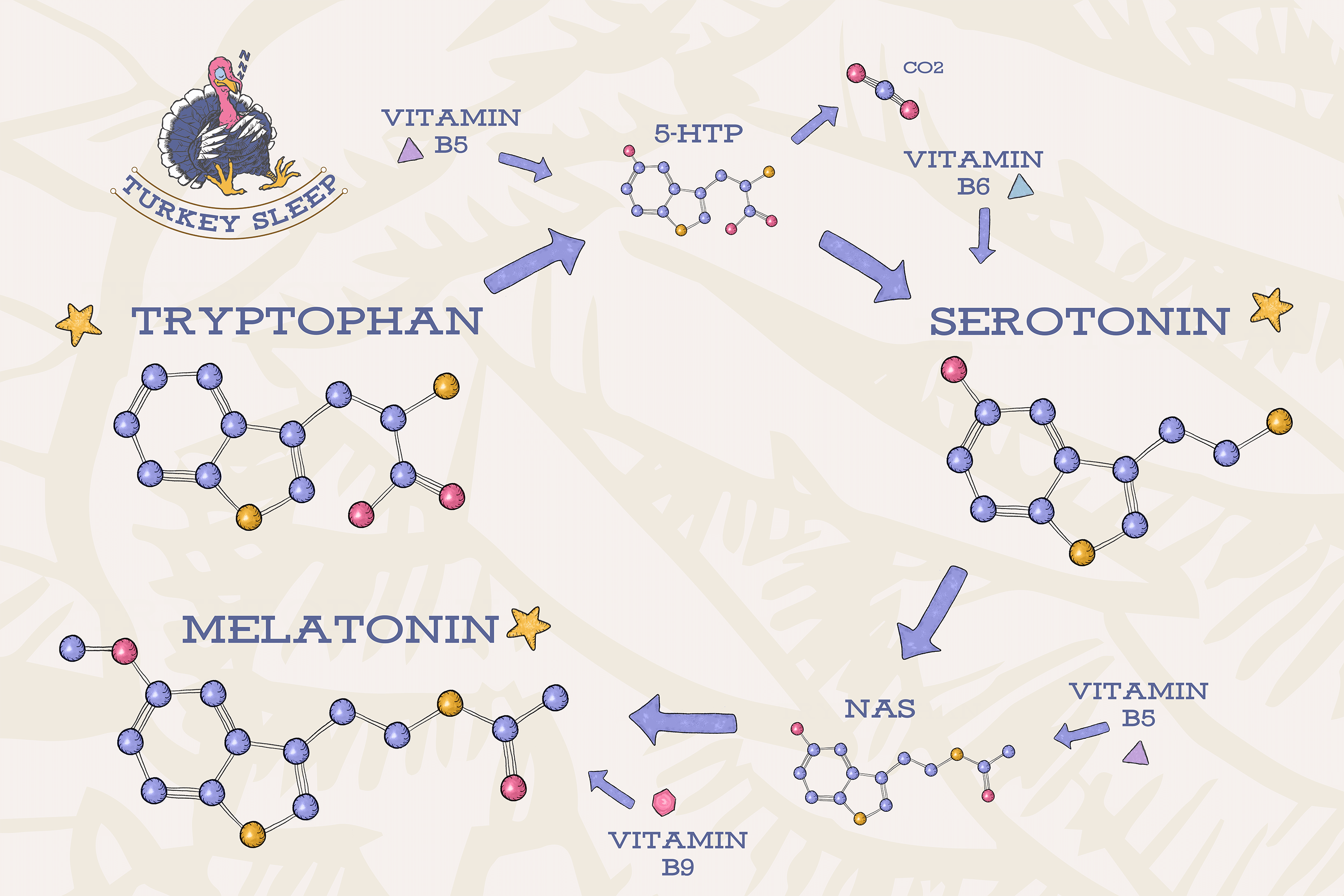 You are currently viewing Tryptophan vs 5HTP – Which is Better?
