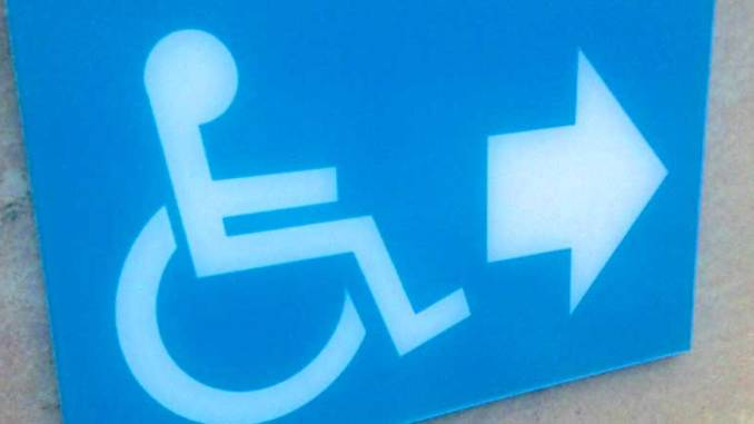 vammaiset