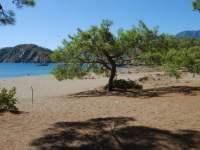 Turkish Beach at Phaselis courtesy of Natalie Sayin of Turkish Travel Blog