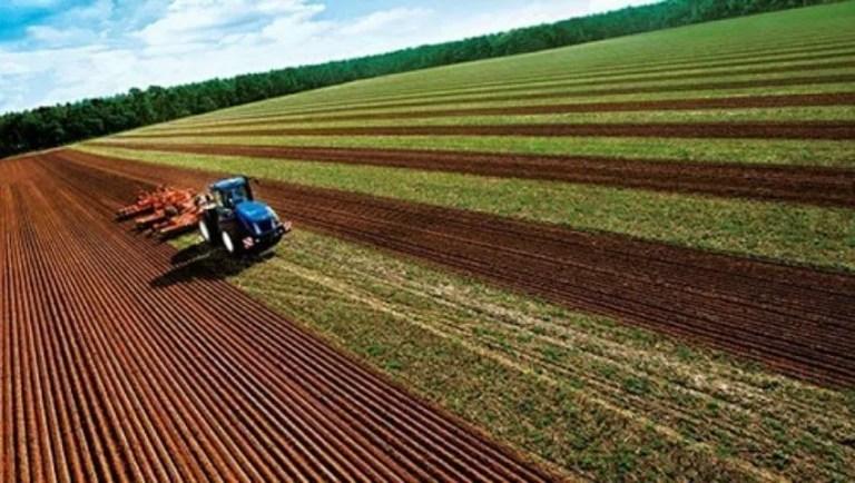 Сельское хозяйство Турции