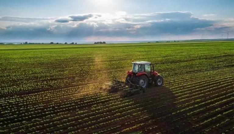 Agricultura en Turquia