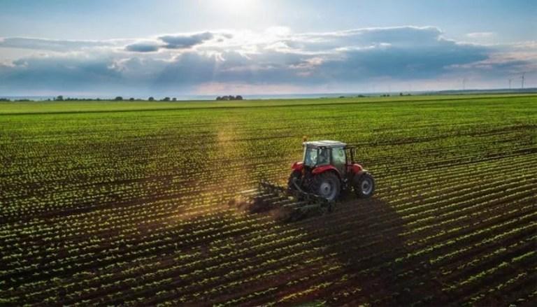 L'agriculture en Turquie