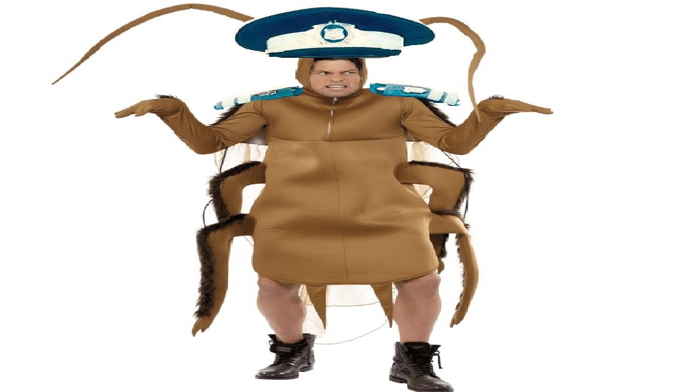 Teleenciclopedia: gândacul polițist de Teleorman