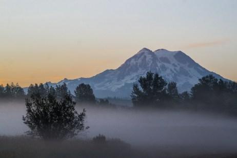 Rainier at dawn