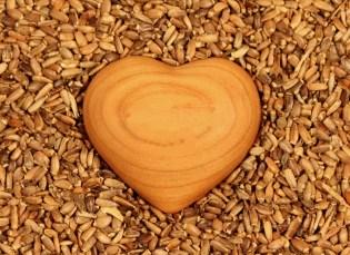 heart-1050338_960_720