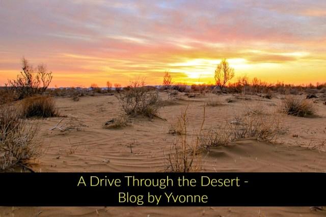 A Drive Through the Desert Blog
