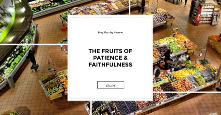FRUITS OF THE SPIRIT; Galations; patience; faitfulness