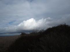 Overlooking Newport Bech, CA