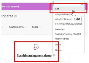 Edit a Turnitin assignment