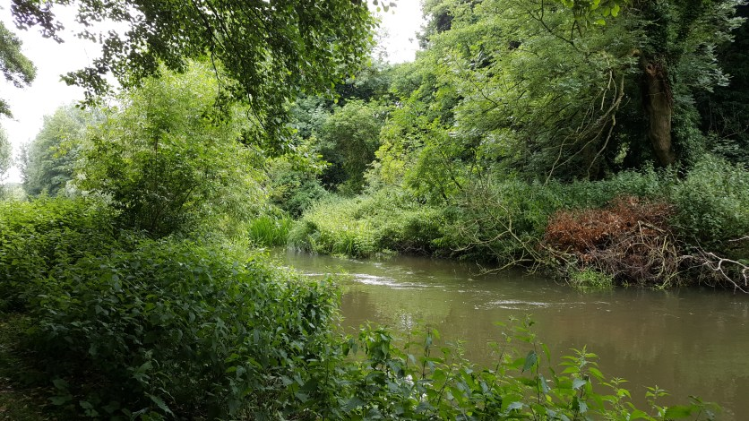 On the banks of the River Lark