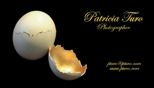 """Patricia's_business_card"""