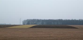 Krajobraz jamiołkowski