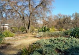 Fitzpatrick Celebration Garden