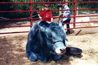 Babe the Blue Ox