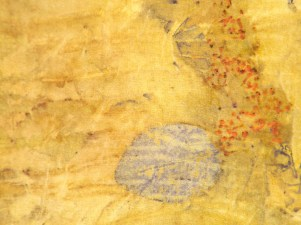 Detail cotinous & euc seed