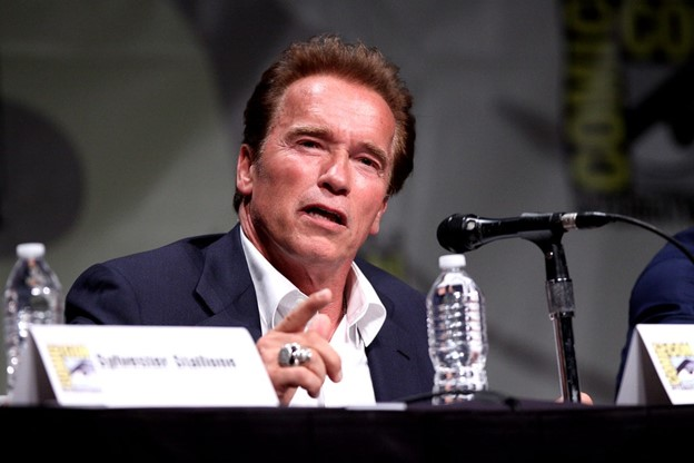 20 Amazing Facts About Arnold Schwarzenegger