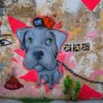 Cartagena Dog Graffiti