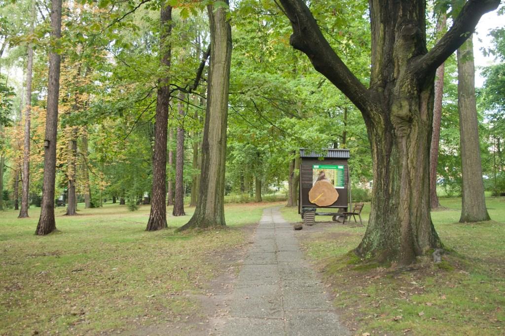 Park w Reptach