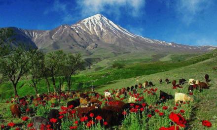 Kurdystan – historia i teraźniejszość – spotkanie z pasją podróżowania