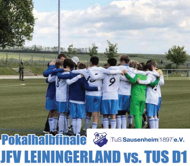 13.03.2019: D1 Pokalhalbfinale in Hettenleidelheim