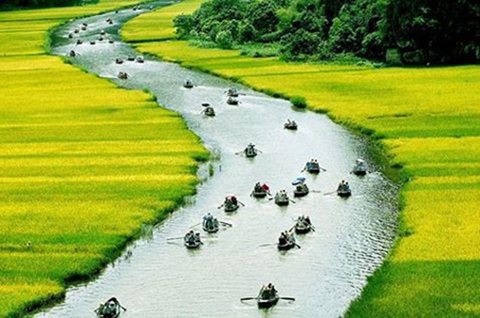 Tâm Thơ, Ngô Nguyễn Trần – Tình Yêu Đất Nước