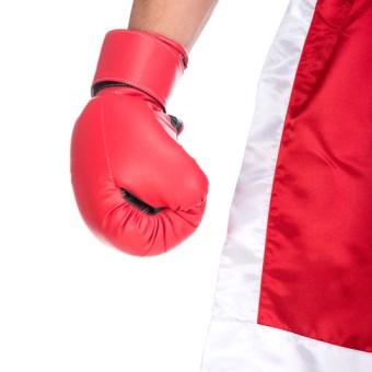 Todo sobre el boxeo - Artes Marciales