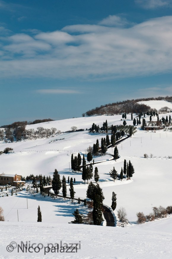 White Tuscany 26