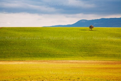 Tuscany photo tour landscape-19