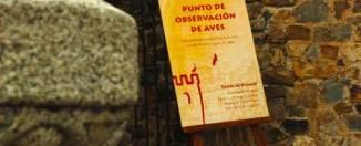 Cáceres celebra el V Festival de las Aves