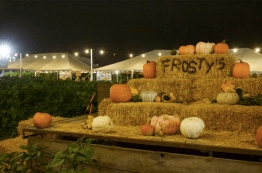 Welcome to Frosty's Forest Pumpkin Patch located in little old Chino Hills, CA. They've got pumpkins, they've got bales of hay, and -- most importantly -- they've got corn in the shape of mazes.