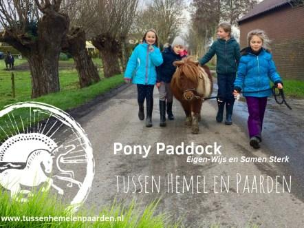 Pony Paddock tussen Hemel en Paarden Sociale vaardigheids training voor kinderen